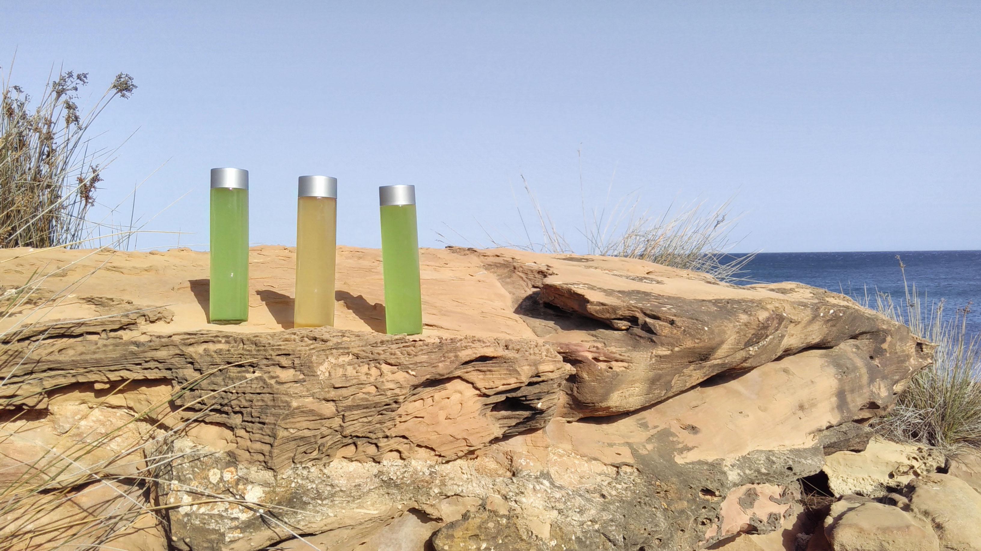 Suikyo Mizudashi, the rocks and the sea